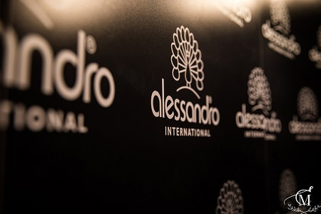 Alessandro Corporate Party